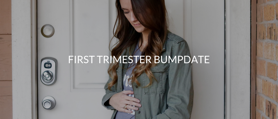 First Trimester Bumpdate | Meekly Loving by Sydney Meek