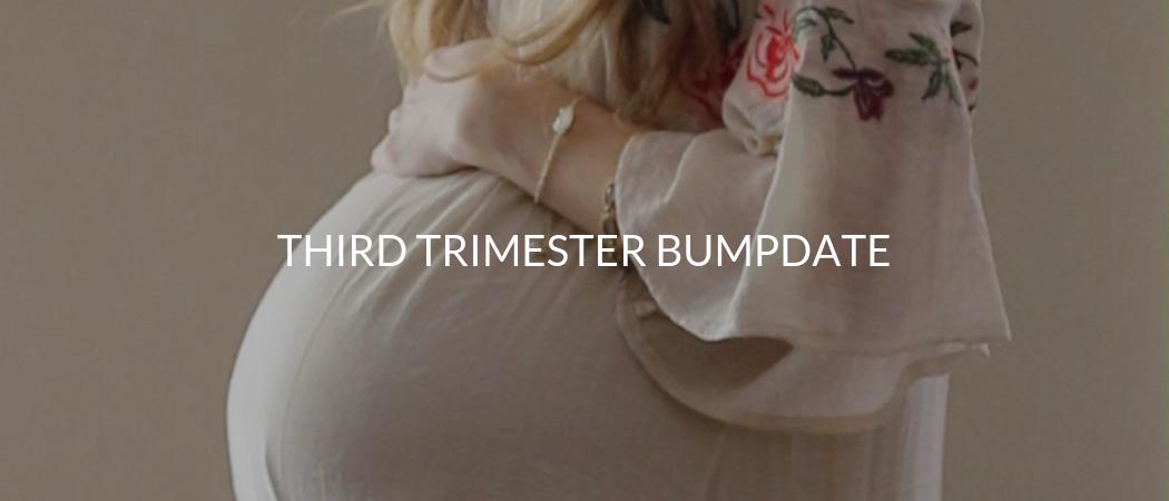 Third Trimester Bumpdate | Meekly Loving by Sydney Meek