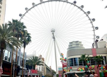 Weekend in Las Vegas | Meekly Loving by Sydney Meek